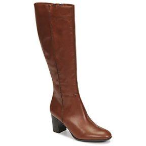 Μπότες για την πόλη Fericelli NAVAROIS ΣΤΕΛΕΧΟΣ: Δέρμα & ΕΠΕΝΔΥΣΗ: Δέρμα & ΕΣ. ΣΟΛΑ: Δέρμα & ΕΞ. ΣΟΛΑ: Συνθετικό