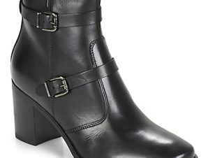 Μπότες André TORI ΣΤΕΛΕΧΟΣ: Δέρμα & ΕΠΕΝΔΥΣΗ: Ύφασμα & ΕΣ. ΣΟΛΑ: Δέρμα & ΕΞ. ΣΟΛΑ: Καουτσούκ